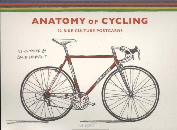 Anatomy of Cycling