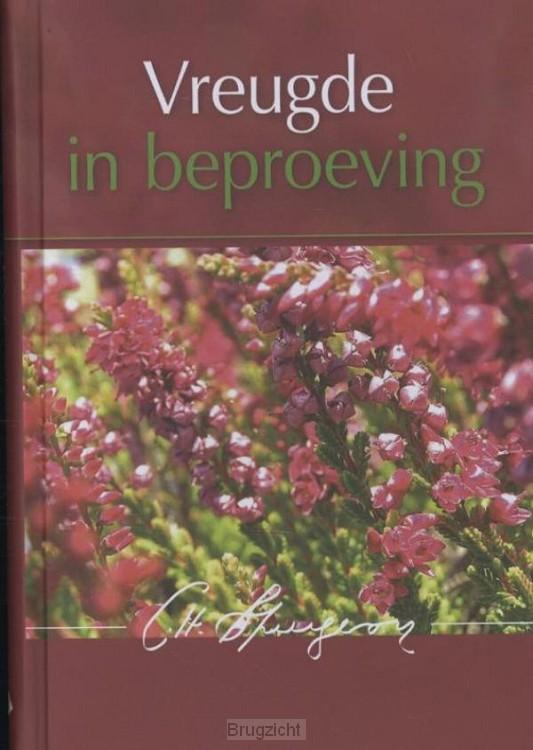 Vreugde in beproeving