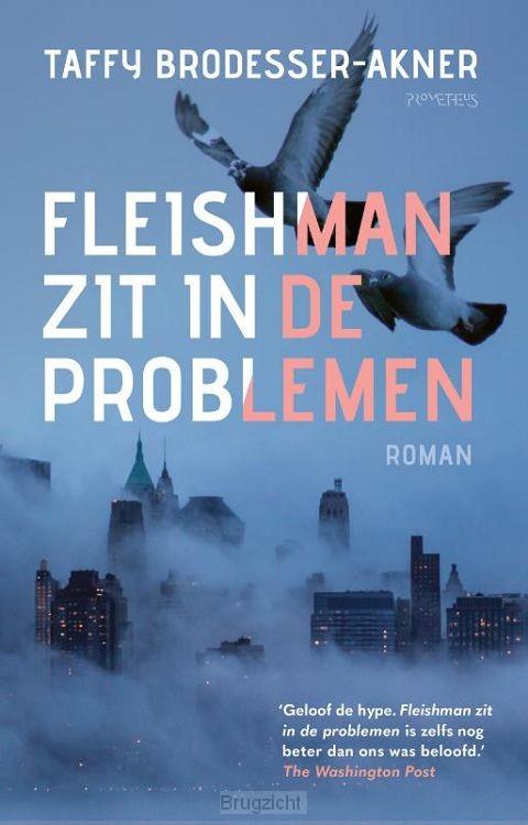 Fleishman zit in de problemen