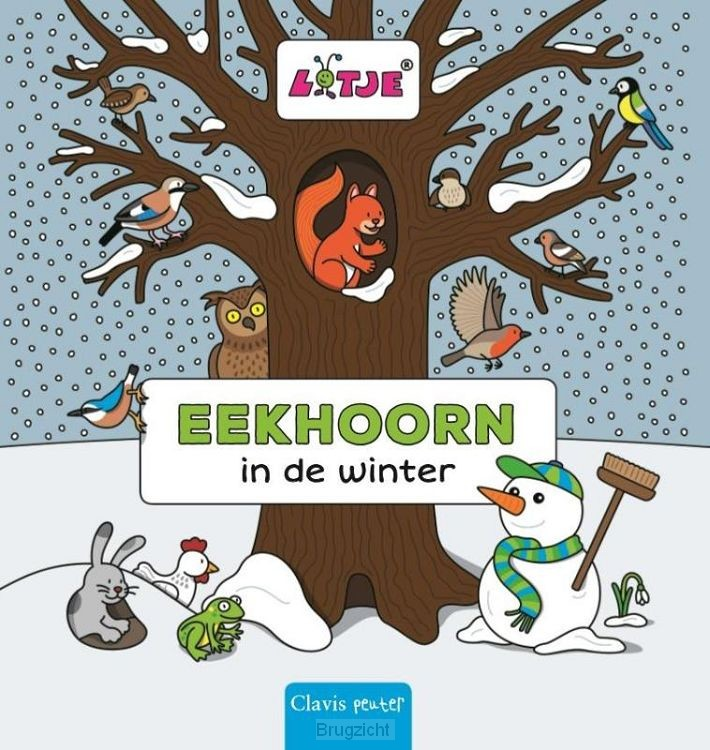 Eekhoorn in de winter