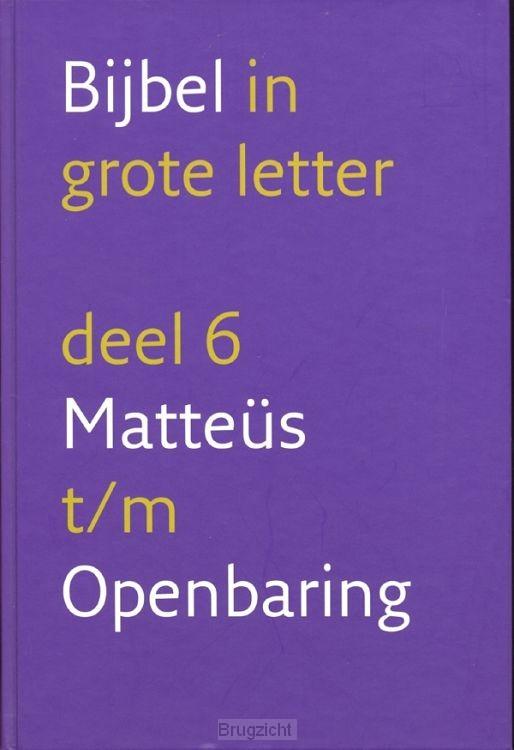 Bijbel nbv dl.6 grote letter NT