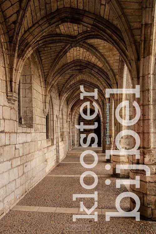 Kloosterbijbel (Willibrord)