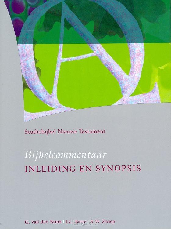 Studiebijbel 1 Inleiding en synopsis
