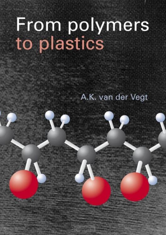 From Polymers to Plastics