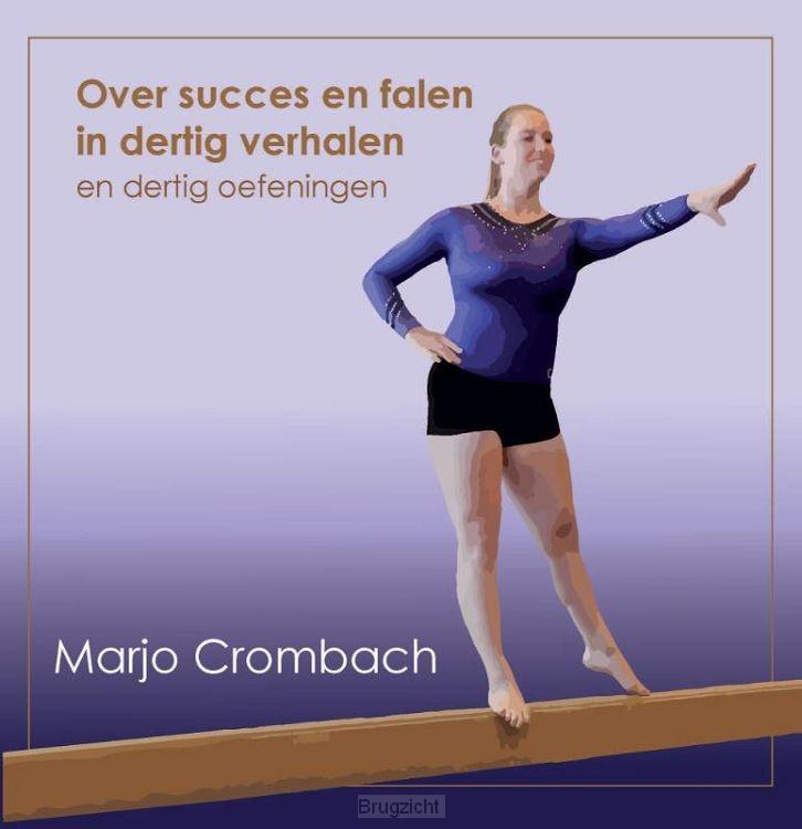 Over Succes en Falen in 30 verhalen en 30 oefeningen