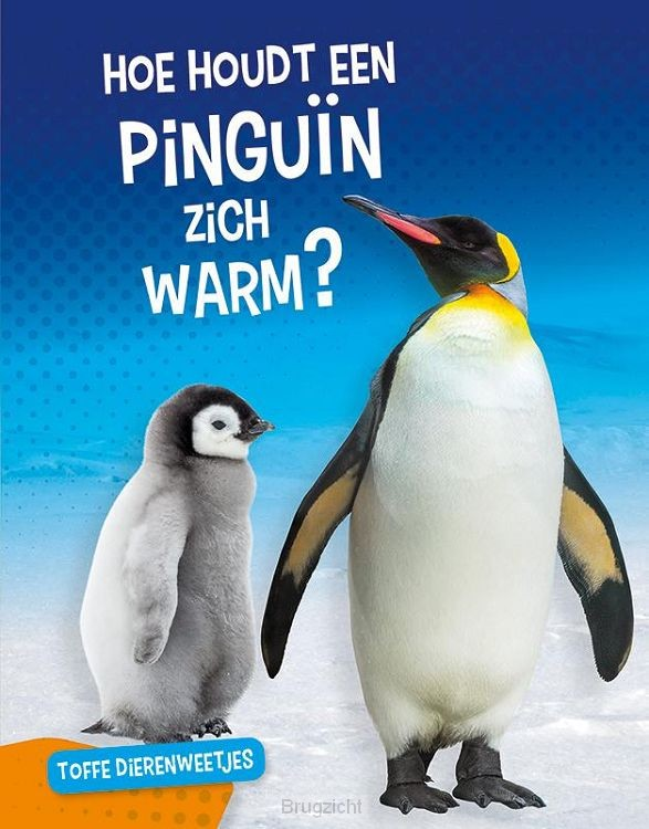 Hoe houdt een pinguïn zich warm?