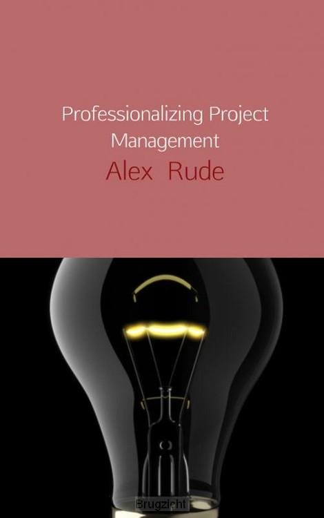 Professionalizing project management