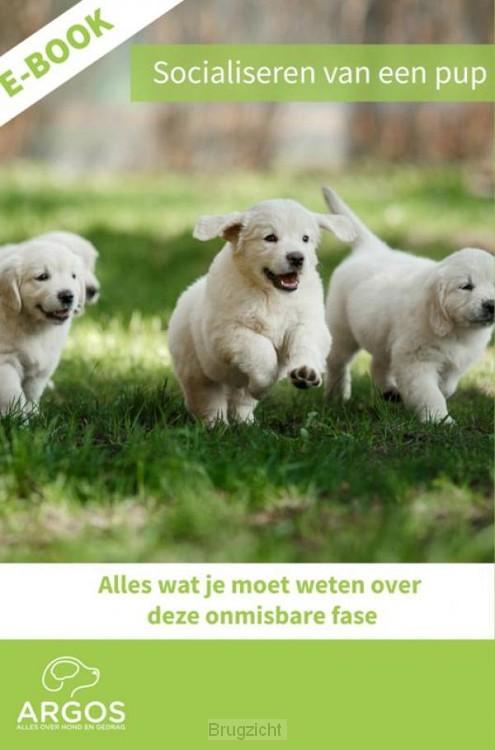 Socialiseren van een pup