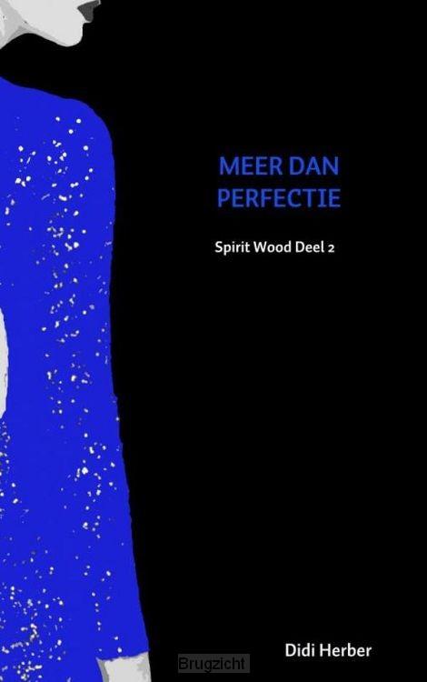 MEER DAN PERFECTIE