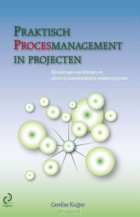 Praktisch procesmanagement in projecten