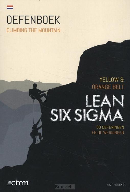 Lean Six Sigma Yellow & Orange Belt