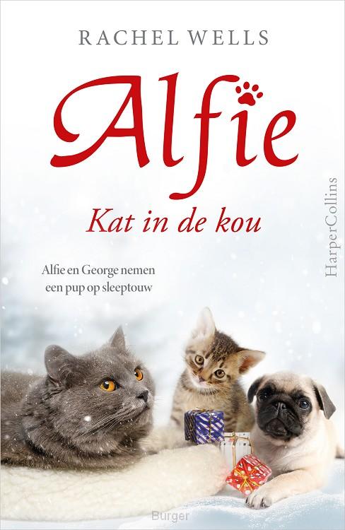 Kat in de kou
