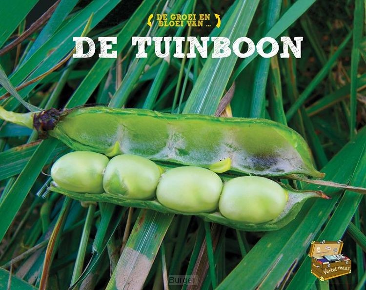 De tuinboon