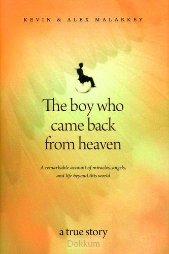 BOY WHO CAM BACK FROM HEAVEN, THE