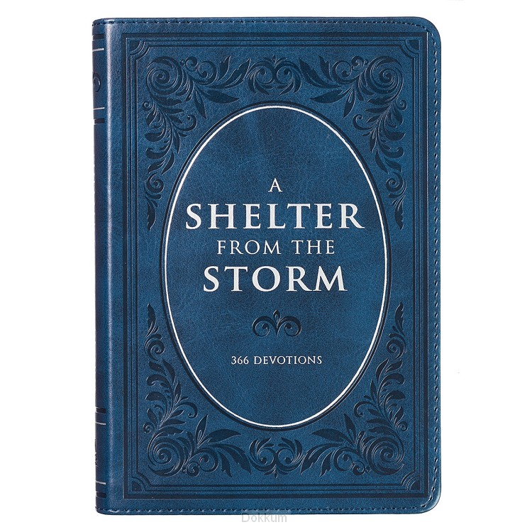 SHELTER FOR THE STORM, A