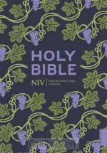 Bible NIV Pocket