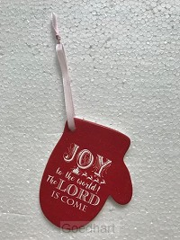 Joy to the world: the Lord has come