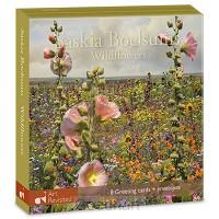 kaartenmapje Saskia Boelsums