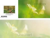 Panoramawenskaart rouw zt bosanemoon