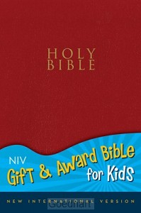 Holy Bible NIV lichtrood