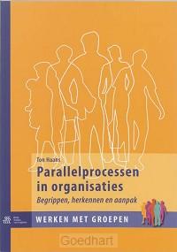 Parallelprocessen in organisaties / druk