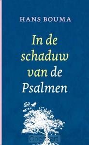 In de schaduw van de psalmen / druk 3