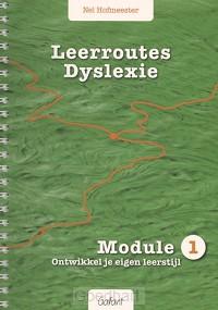 Leerroutes dyslexie / Module 1: ontwikke