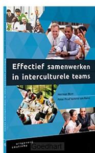 Effectief samenwerken in interculturele