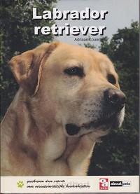 Labrador retriever / druk 1