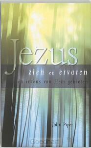 Jezus zien en ervaren / druk 1