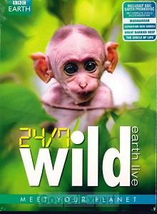 24/7 Wild