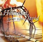Hosanna zoon van david