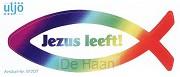 Vis sticker 12.5cm regenboog jezus leeft