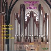 Vincent De Vries bespeelt het Seife
