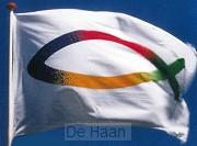 Vlag 100x150cm vis-logo 4 kleurig