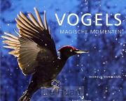 Vogels magische momenten