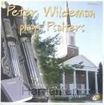 PETER WILDEMAN PLAYS PSALTERS