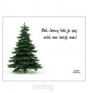 Kerstkaart met Jezus heb je echt een ker