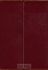 KJV compact lp ref bible snapflap burg