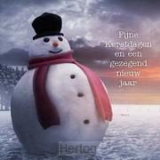 Kerstkaart sneeuwpop fijne kerstdagen en