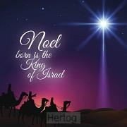 Kerstkaart noel