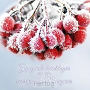 Kerstkaart gezegende kerstdagen tros bev