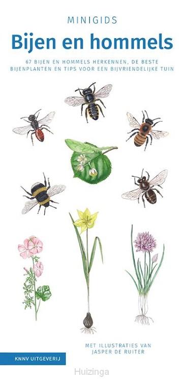 Set Minigids Bijen en hommels