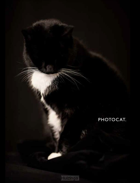 PhotoCat.