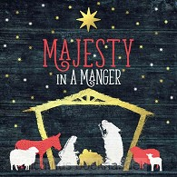 Majesty in a manger