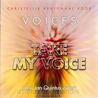 Take my voice