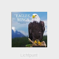 2022 Mini wall calendar Eagles'' wings
