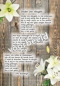 82-01 A5 gedichten set5