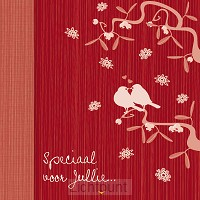 Wk kerst vogeltjes rood zilver