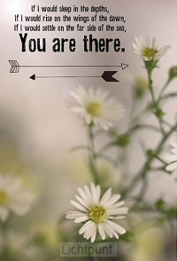 Wk you are there
